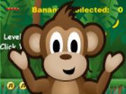 Cheeky Monkey Flash